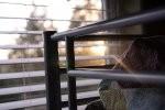 W jaki sposób najbardziej profesjonalnie udekorować okno? Co będzie najlepsze? Warte polecenia są rolety rzymskie i fotorolety